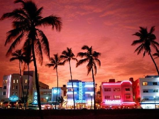 Emergency Security Systems in Miami FL